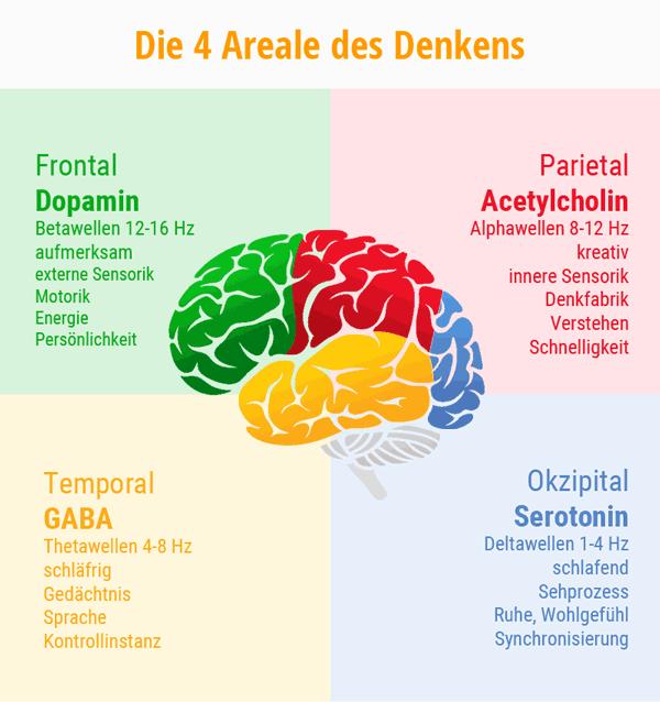 Gehirnbereiche Fronatl, Parietal, Temporal und Okzipital. Ihre Neurottransmitter und Funktionen. © foodfibel.de eigenes Werk.