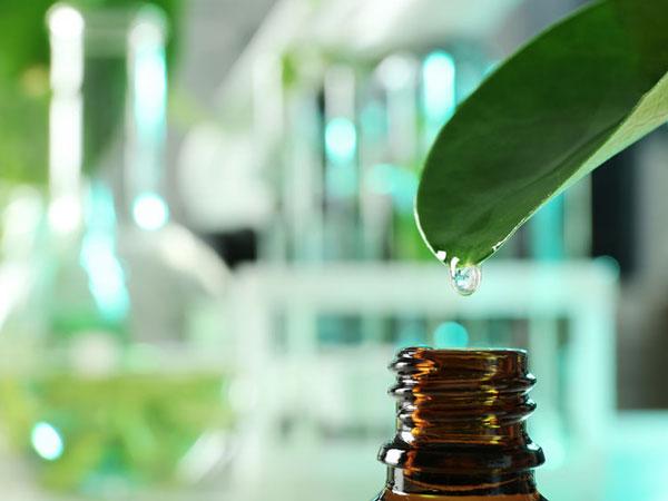 Pflanzenexrakt. © Olga Yastremska  123rf.com.