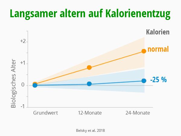 Langsamer altern auf Kalorienentzug. Belsky et al 2018. © foodfibel.de, eigenes Werk.