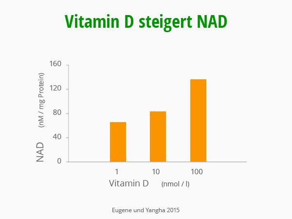 Vitamin D steigert NAD. Eugene und Yangha 2015. © foodfibel.de, eigenes Werk.