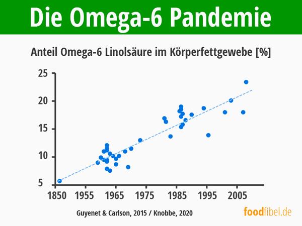 Omega-6 Linolsäure in Körpergewebe von 1850 bis 2005. © foodfibel.de